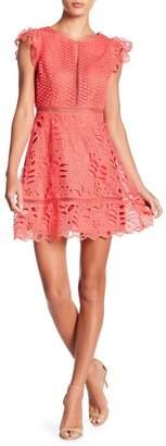 BB Dakota Ariane Mix Lace Dress