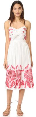Red Carter Sage Dress $220 thestylecure.com