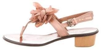 Lanvin Floral Ankle Strap Sandals