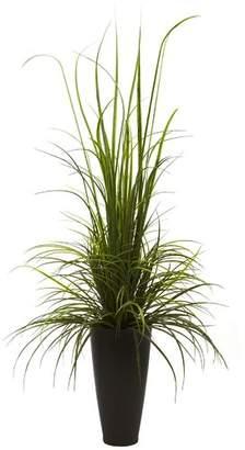 Brayden Studio River Grass Floor Plant in Decorative Vase