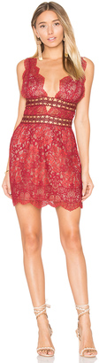 For Love & Lemons Mon Cheri Mini Dress $290 thestylecure.com