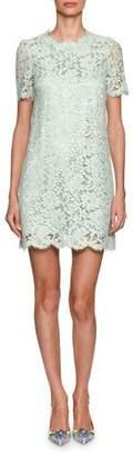 Dolce & Gabbana Short-Sleeve Floral Lace Minidress, Light Green