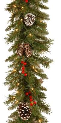 clear National Tree 9 Foot by 10 Inch Frosted Berry Garland with 100 Lights (FRB-9GLO-1)