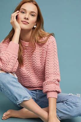Velvet by Graham & Spencer Ceri Pointelle Sweater