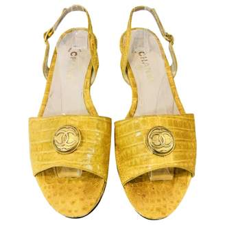 Chanel Crocodile sandal