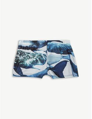 Molo Niko Whale Print Swim Shorts