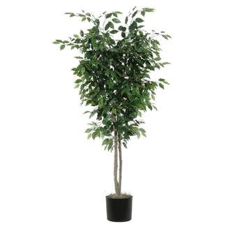 Three Posts Deluxe Tree in Pot