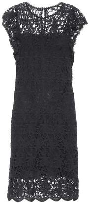 Velvet Ally cotton lace dress