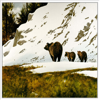 Jonathan Bass Studio Grizzly Mother, Decorative Framed Hand Embellished Canvas
