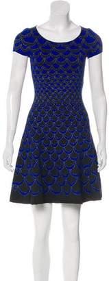Diane von Furstenberg Metallic A-Line Dress