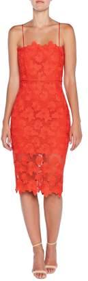 Bardot Sunshine Lace Sheath Dress