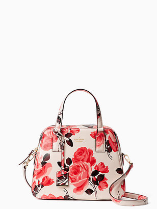Cameron street roses little babe $278 thestylecure.com
