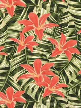 Superfresco Easy New Tropical Wallpaper