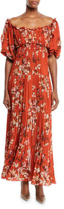 Johanna Ortiz Viajes Del Alma Off-the-Shoulder Short-Sleeve Floral-Print Silk Georgette Pleated Gown
