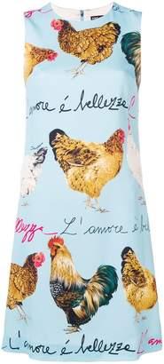 Dolce & Gabbana chicken print dress