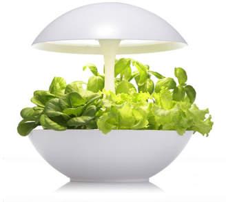 Akarina One Indoor Plant Grower