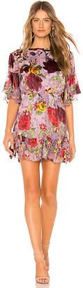 Alice + Olivia Katrina Dress