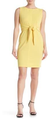 TASH + SOPHIE Sleeveless Shift Dress