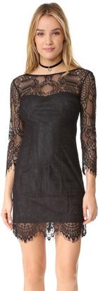 BB Dakota Everton V Back Lace Dress $115 thestylecure.com