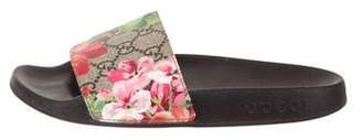 Gucci 2017 GG Blooms Supreme Sandals
