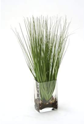 Distinctive Designs Waterlook Grass in Rectangular Glass Decorative Vase