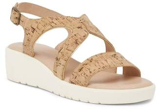 Johnston & Murphy Cora Sport Sandal (Women)
