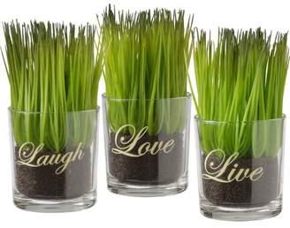 Andover Mills Live Laugh Love Print Desktop Grass in Cylinder Jar