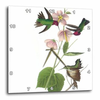 3dRose Hummingbirds with pink flowers vintage, Wall Clock, 10 by 10-inch