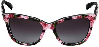 Dolce & Gabbana Butterfly Shape Roses Printed Sunglasses