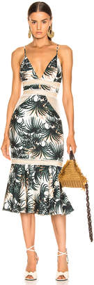 PatBO Palm Print Fitted Midi Dress in Ivory & Green | FWRD