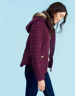 Joules Clothing Burgundy Gosling Padded Jacket