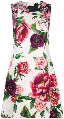 Dolce & Gabbana peony-print dress