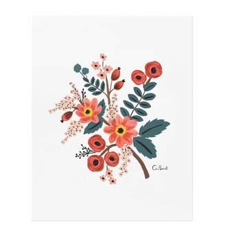 Lulu & Georgia Coral Botanical Print