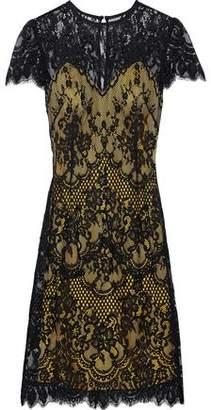 Catherine Deane Cotton-blend Lace Dress