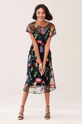 Next Womens Black Floral Embroidered Mesh Midi Dress