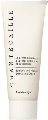 Chantecaille Bamboo and Hibiscus Exfoliating Cream