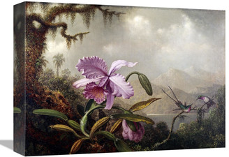 Global Gallery Hummingbirds And Orchids By Martin Johnson Heade