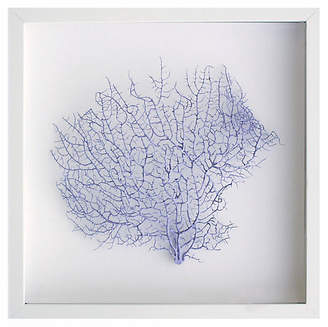 Karen Robertson Exotic Sea Fan - Lavender