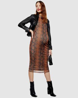 Snake Print Funnel Neck Midi Body-Con Dress
