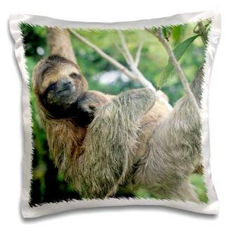 3dRose Three-toed sloth wildlife, Corcovado NP, Costa Rica - SA22 KSC0137 - Kevin Schafer - Pillow Case, 16 by 16-inch
