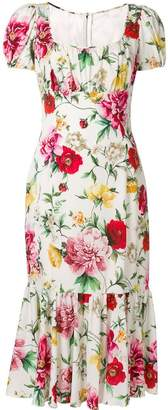 Dolce & Gabbana floral print midi dress