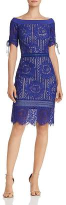 Tadashi Shoji Petites Off-the-Shoulder Lace Dress