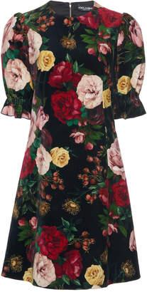 Dolce & Gabbana Floral-Print Cotton-Blend Mini Dress