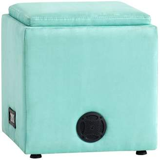 Pottery Barn Teen Suede Rockin' Speaker Storage Cube, Pool