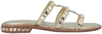 Ash Sandals - Item 11623670SS