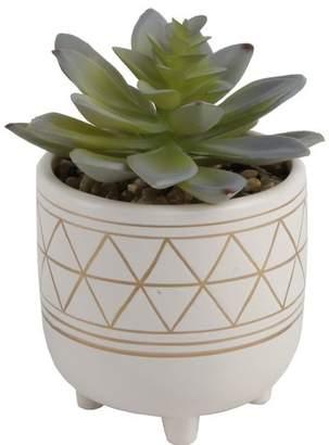 Bungalow Rose Gold Geo Hand Painted Legs Succulent Plant Pot