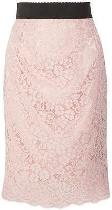 Dolce & Gabbana Corded Cotton-blend Lace Midi Skirt - Pastel pink