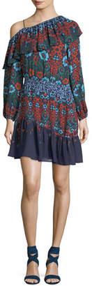 Parker Clarisse Floral-Printed Chiffon Dress