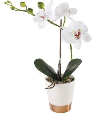 Ebern Designs 13 Real Touch Orchid 2 Tone Matalic/ Floor Flowering Plant in Ceramic Pot