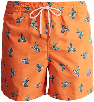 Polo Ralph Lauren Traveller hummingbird-print swim shorts